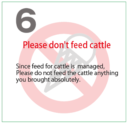 Please don't feed cattle